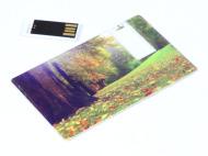 Card3W_